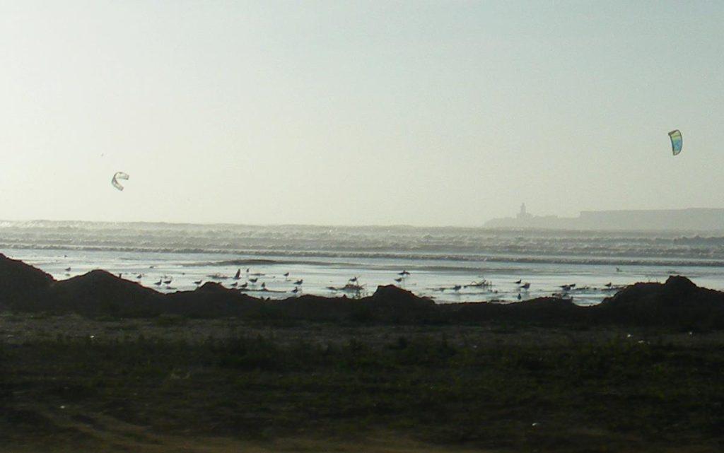 Kite flying on Essaouira Beach