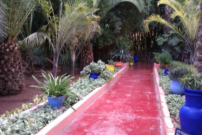 Le Jardin Majorelle.