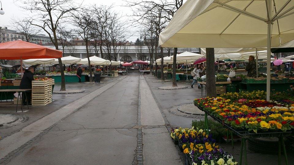 Ljubljana open air market