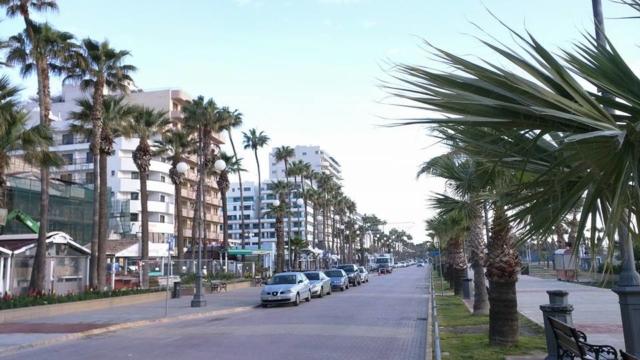 Finikoudes boulevard