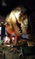 T-Rex model inside Petrosains Science Museum.