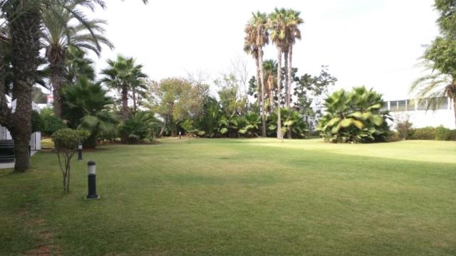 Ibis Hotel Rabat gardens.
